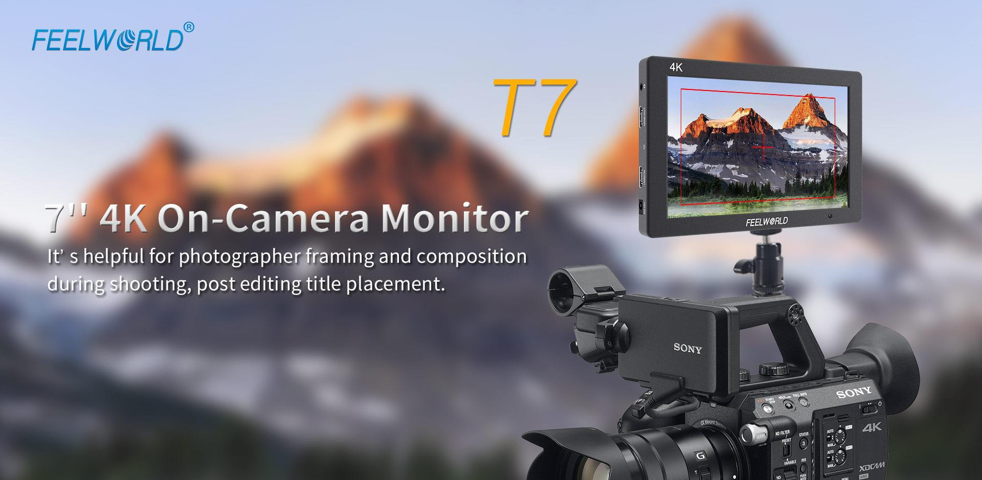 video-7-monitor1
