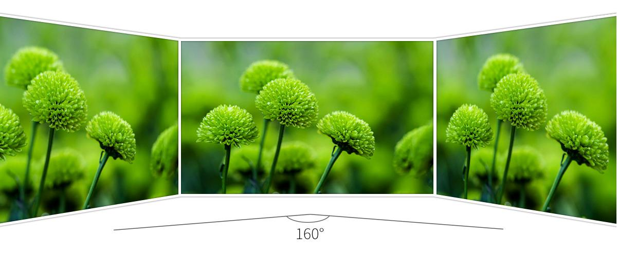 /field-video-monitor