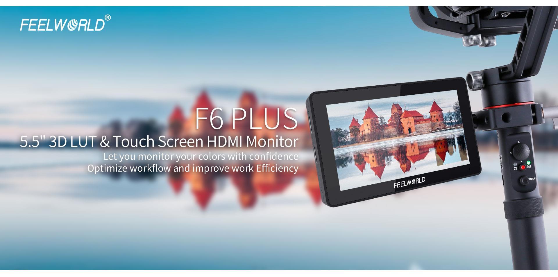 portable camera monitor