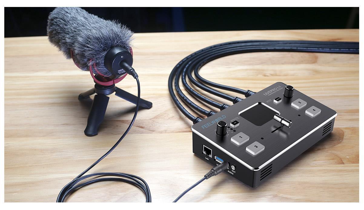 L1 audio switcher